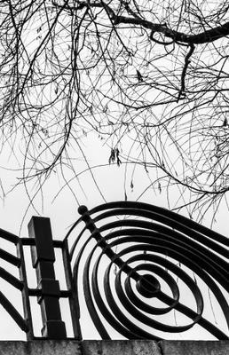 Весна в Минске минск дерево парк