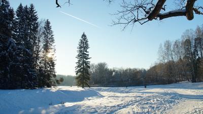 Долина реки Славянка Павловский парк зима речка лес