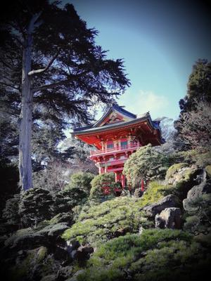 Японский сад...