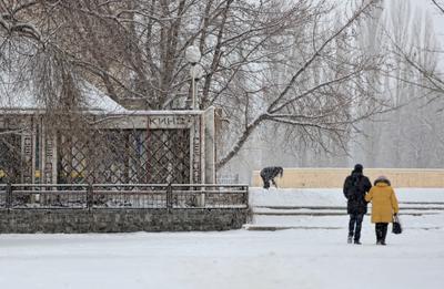 В городе моём снег...