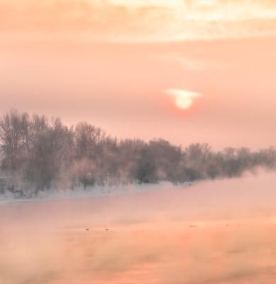 Тишина. Река берег закатное солнце утки на воде