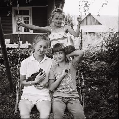 Три Сестрички и их Курицы. портрет три сестры детство