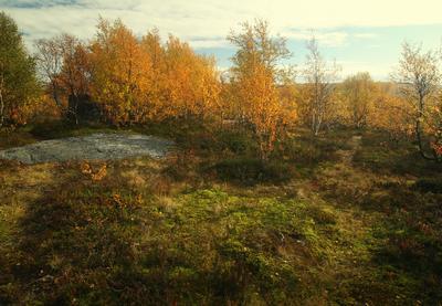 Еще раз про осень