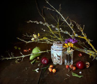 Краски крокусов взбодрили хмурый февраль... натюрморт с крокусами и ветками крокусы ветки чайная коробка