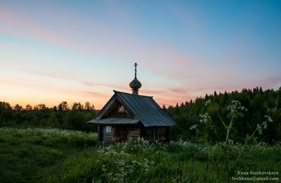 Тишина Урочище Куртяево Северодвинск Белое море лето