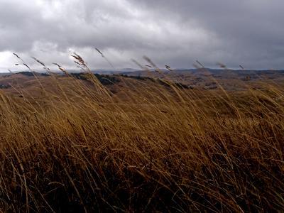 Ветер 2. Крым, горы, Караби-Яйла, осень, ветер