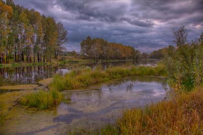 Запах осени Пейзаж красивые места осень