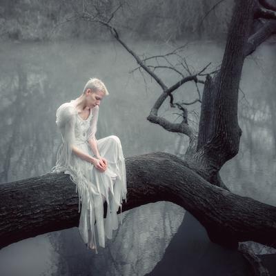Fallen девушка портрет ангел ворона белое природа вода дерево платье усталость грусть тишина Россия Краснодар