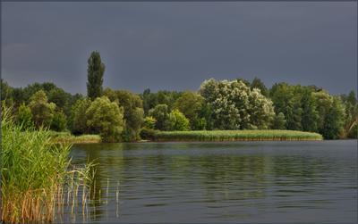 Перед грозой перед грозой, озеро, лето, пейзаж