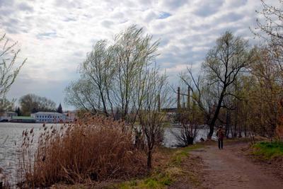 Городское озеро весна деревья дома озеро облака