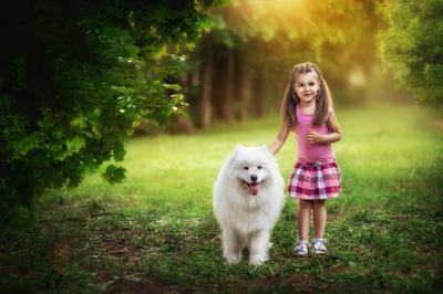 Walking with Laika