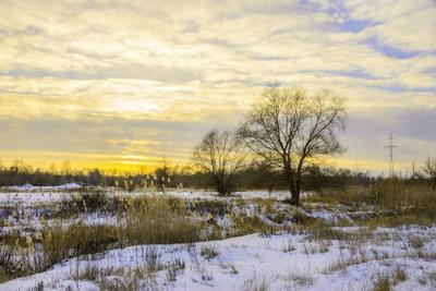 Вечерние краски февраля пейзаж природа зима вечер закат Воронеж река Усманка тростник снег луг