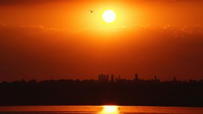 Закат над Днепровским лиманом. Закат Солнце Птица Вода Лиман