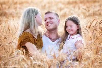 Семья в хлебах семья хлеба покос закат