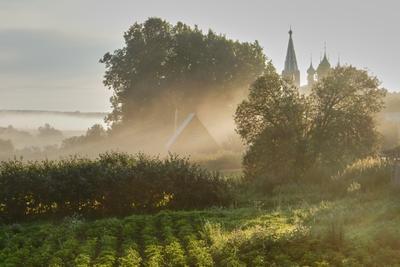Утро на дуниловских задворках Данилово утро туман