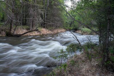 Разлив реки 3 река Алтай половодье