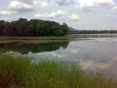 *** лето облака озеро трава