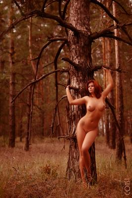 Dryad konstantin skomorokh art nude константин скоморох эротика