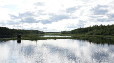 речка Ухтарка река