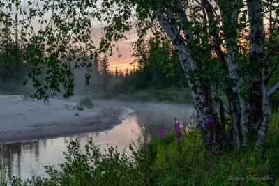 А по-над водою туман расстилается река пейзаж туман Россия ЯНАО заполярье