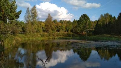 *** осень природа пейзаж Россия небо озеро лес