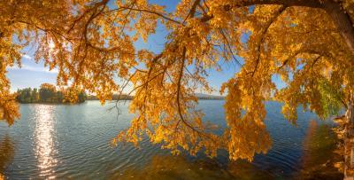 ЯНТАРНЫЙ  СЕНТЯБРЬ осень кыштым озеро t_berg
