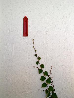 Простая текстура... стена листья огнетушитель тестура