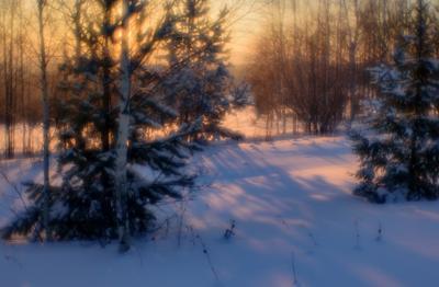 Зимний рассвет. монокль 50 мм