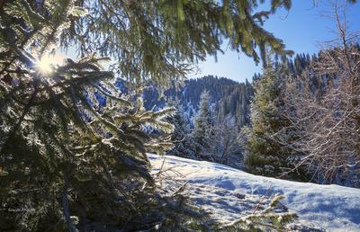 *** Алматы горы зима