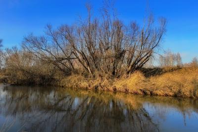 Река Картагон ангарск река картагон