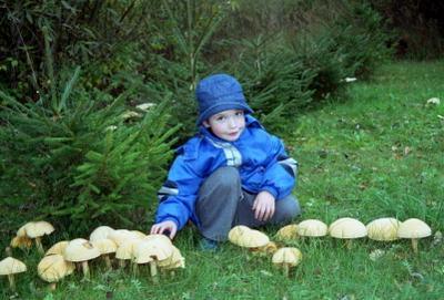 ***Когда грибы былти большими , а ёлочки маленькими...
