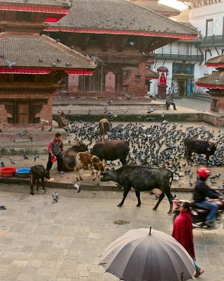 Утро на Дурбар Сквер Непал Катманду