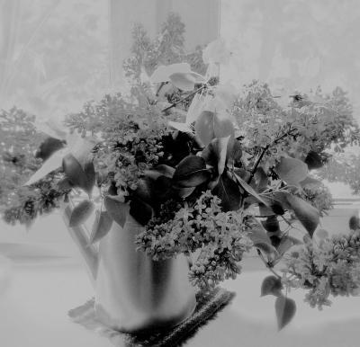 Букет сирени цветочки