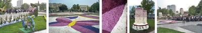 Парк, устланный ковром из чудесных цветов Цветы Праздник люди город улыбки весна аромат