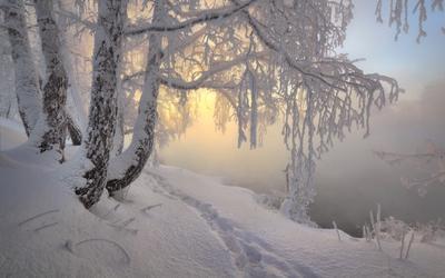 утро красит нежным светом Южный Урал, река Миасс, утро, туман, изморось, снег, зима