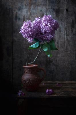 Время сирени сирень ветка сирени весна май натюрморт аромат