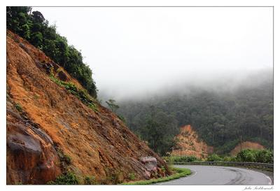 The road to Dalat vietnam dalat вьетнам далат