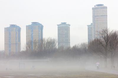сонное царство город туман парк залив апрель