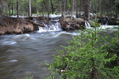 Разлив реки 2 река Алтай половодье