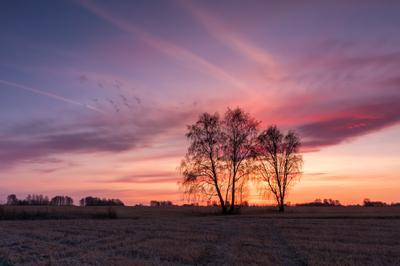 *** Осень октябрь пейзаж рассвет