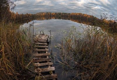 Рано ушли... осень лес озеро