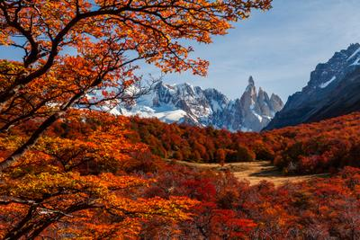 Огонь Патагонии Патагония Аргентина