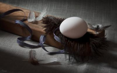 *** яйцо перья брусок деревянный
