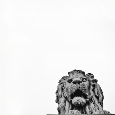 The City of Lions nikon black-and-white bw hungary budapest sculpture monument lion венгрия будапешт лев