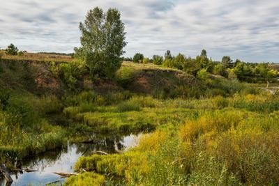*** природа пейзаж осень татарстан река морквашка