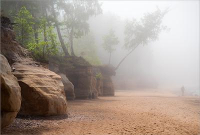 Неожиданный туман берег туман скалы песчаник пляж