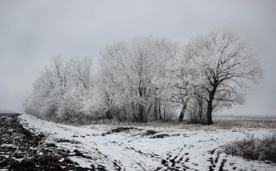 Зима yorgysovna