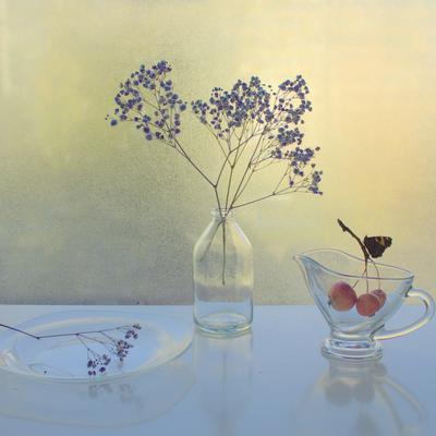 Про бабочку стекло бабочка натюрморт