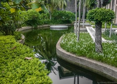 Пруд у отеля Китай Hilton Хайнань пруд