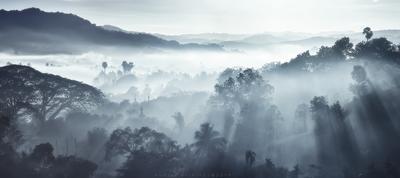 Ранним туманным утром myanmar balloons